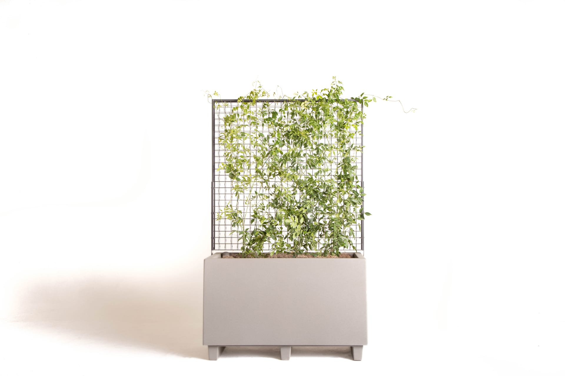 greenscreen® Classic Planter on white background